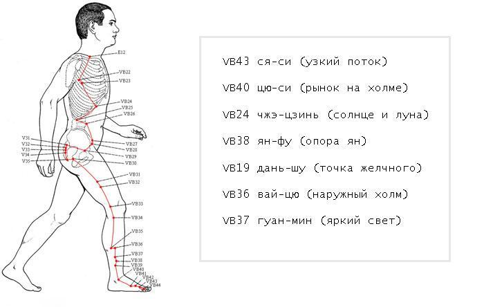 точки меридиана желчного