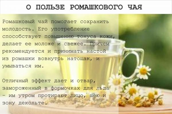 Ромашковый чай - полезные свойства