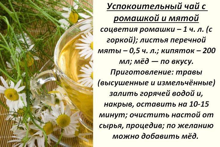 Рецепт ромашкового чая