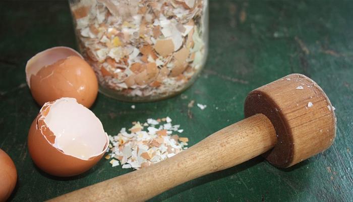 Перемолотая яичная скорлупа