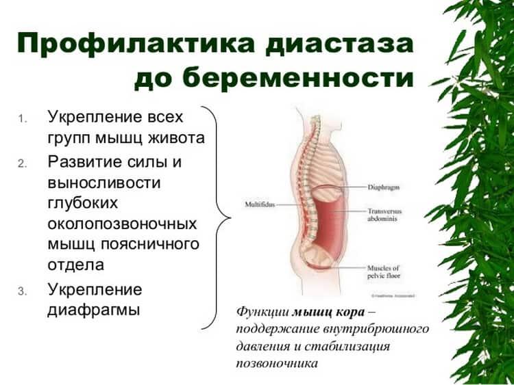 Профилактика расхождения прямых мышц