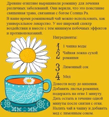 Рецепт чая с ромашкой