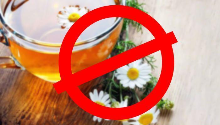 Противопоказания ромашкового чая