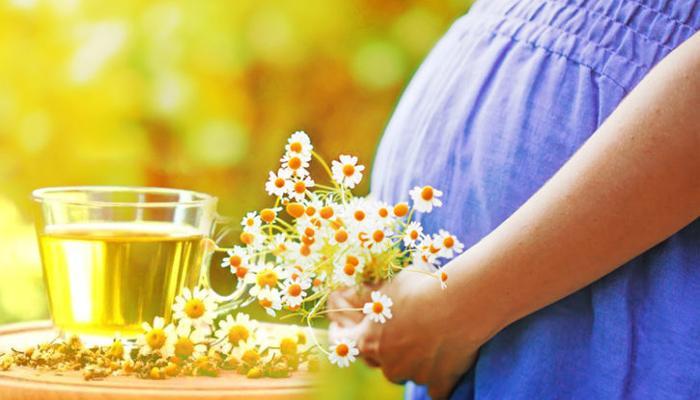 Чай из ромашки беременной