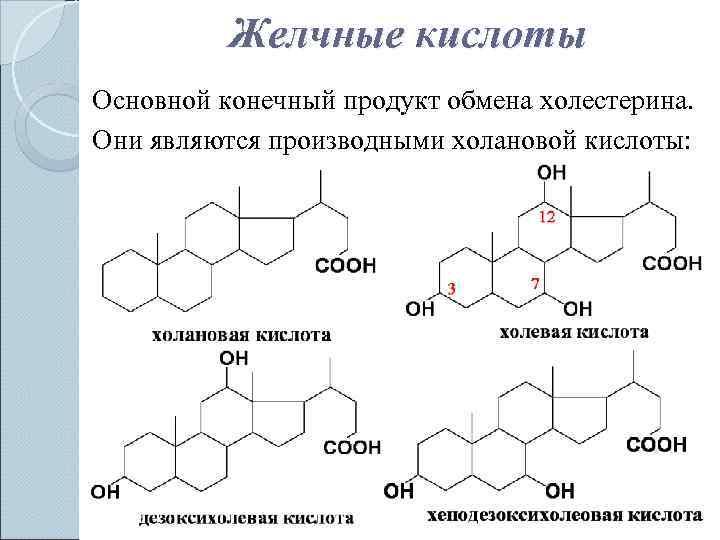 Структурные формулы желчных кислот