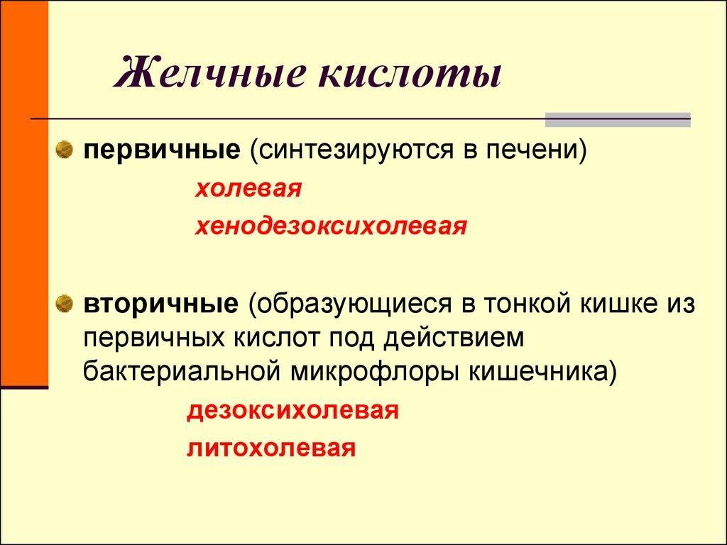 Первичные и вторичные желчные кислоты
