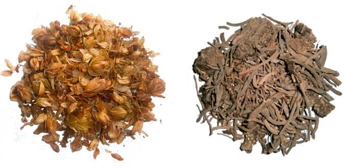 Сушеные шишки хмеля и валериана