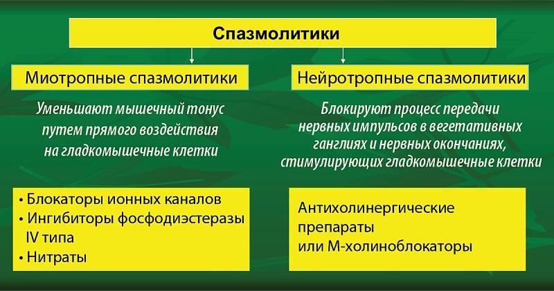 Механизм действия спазмолитиков